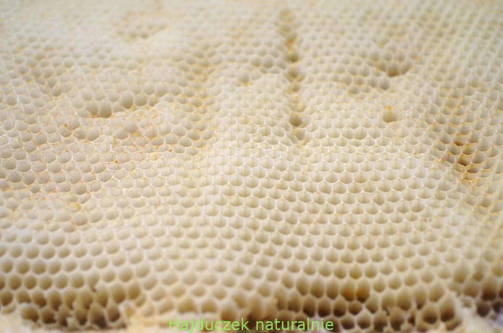 mydło lniane z miodem i woskiem