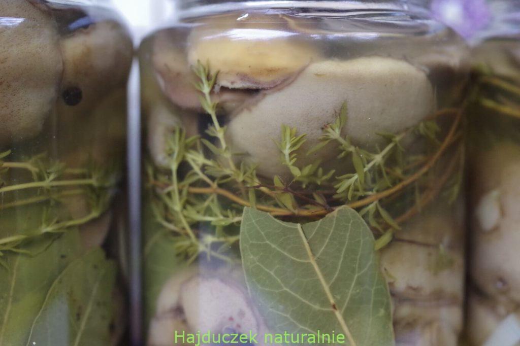 marynowane maślaki