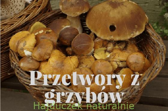 Przetwory z grzybów – spis treści