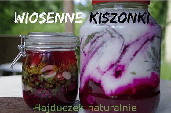 Wiosenne kiszonki – spis treści