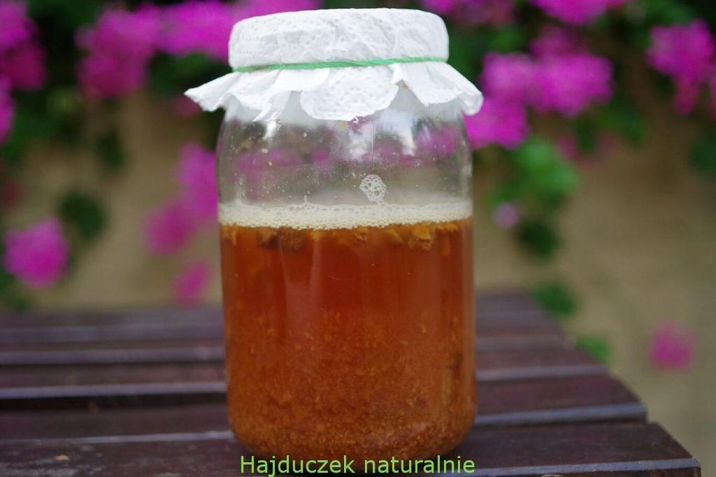 ocet z soku śliwkowego