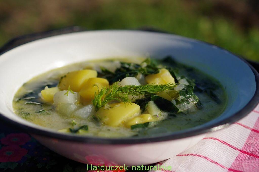 zupa z kalarepy, czyli oberiba