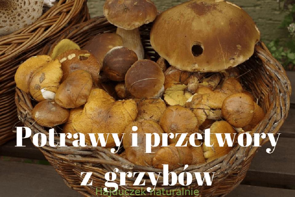 Potrawy i przetwory z grzybów – spis treści