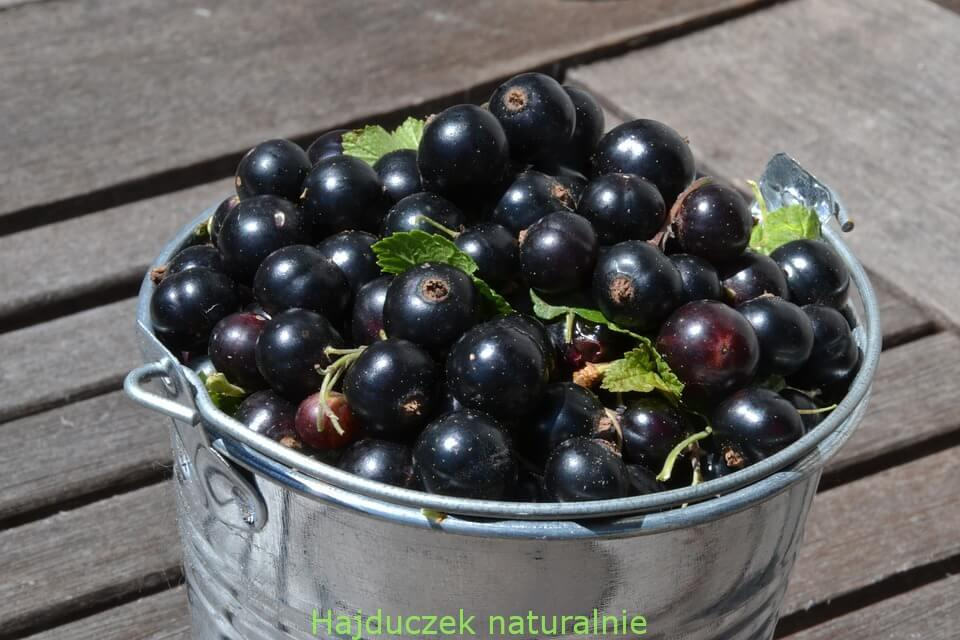 likier Cassis